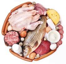 Белковая диета — диета-долгожитель