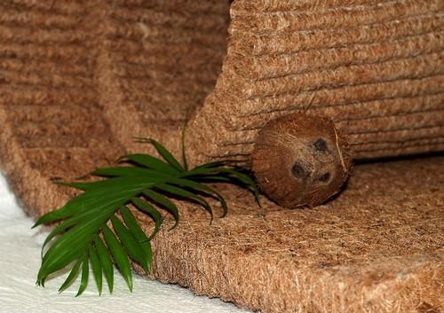 на матрасах из кокосовой койры